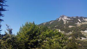 Halbzeit unterm Karkopf. Das zweite Wiesenfleckerl links vom Gipfel wird mein Startplatz.